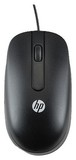 Мышь HP Optical Scroll Mouse Black (QY775AA)