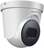 IP камера Falcon Eye FE-IPC-D2-30P