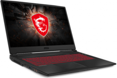 Ноутбук MSI GL75 (10SCSR-018)