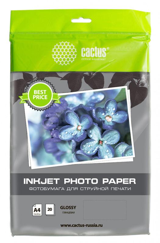Фотобумага Cactus CS-GA413020ED